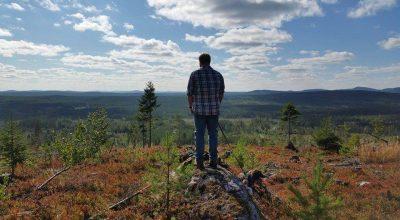 Dead Wood, Music Review, Music Blog, Sweden Music Scene, Folk Review,