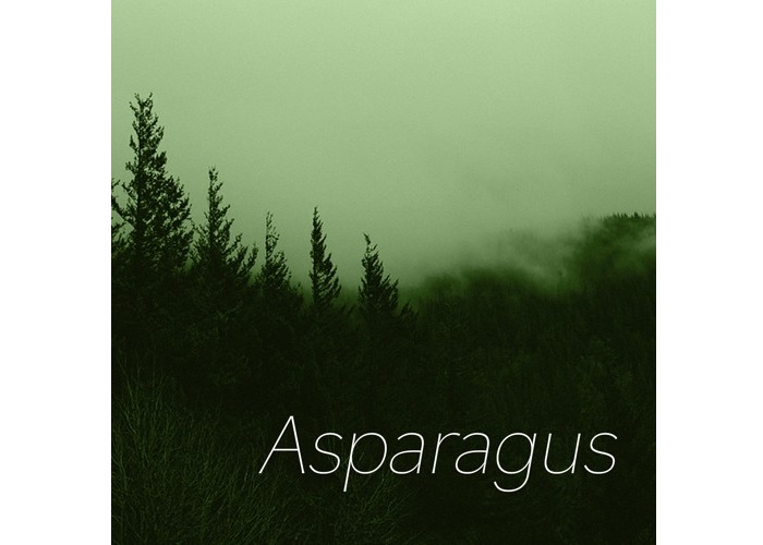 Eterza, Asparagus, Review, Music Review, Single Review, Indie Blog, Independent Music Blog, Unsigned, Music Promotion, Music Submissions,