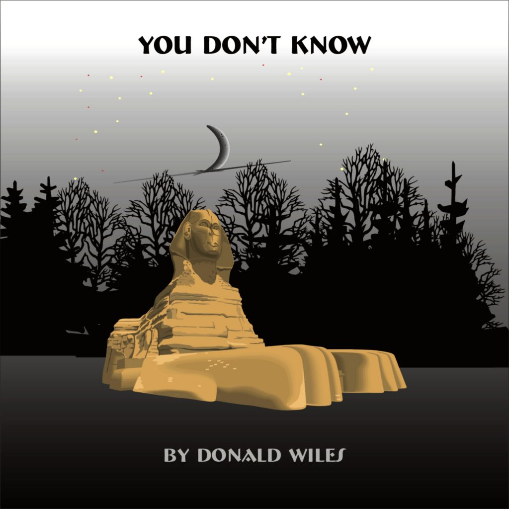 Donald Wiles, You Don't Know, Music Review, Interview, Music Blog, Unsigned Artists, Songwriters, Indie Blog, Independent Music, Music Promotion, Submit Music,
