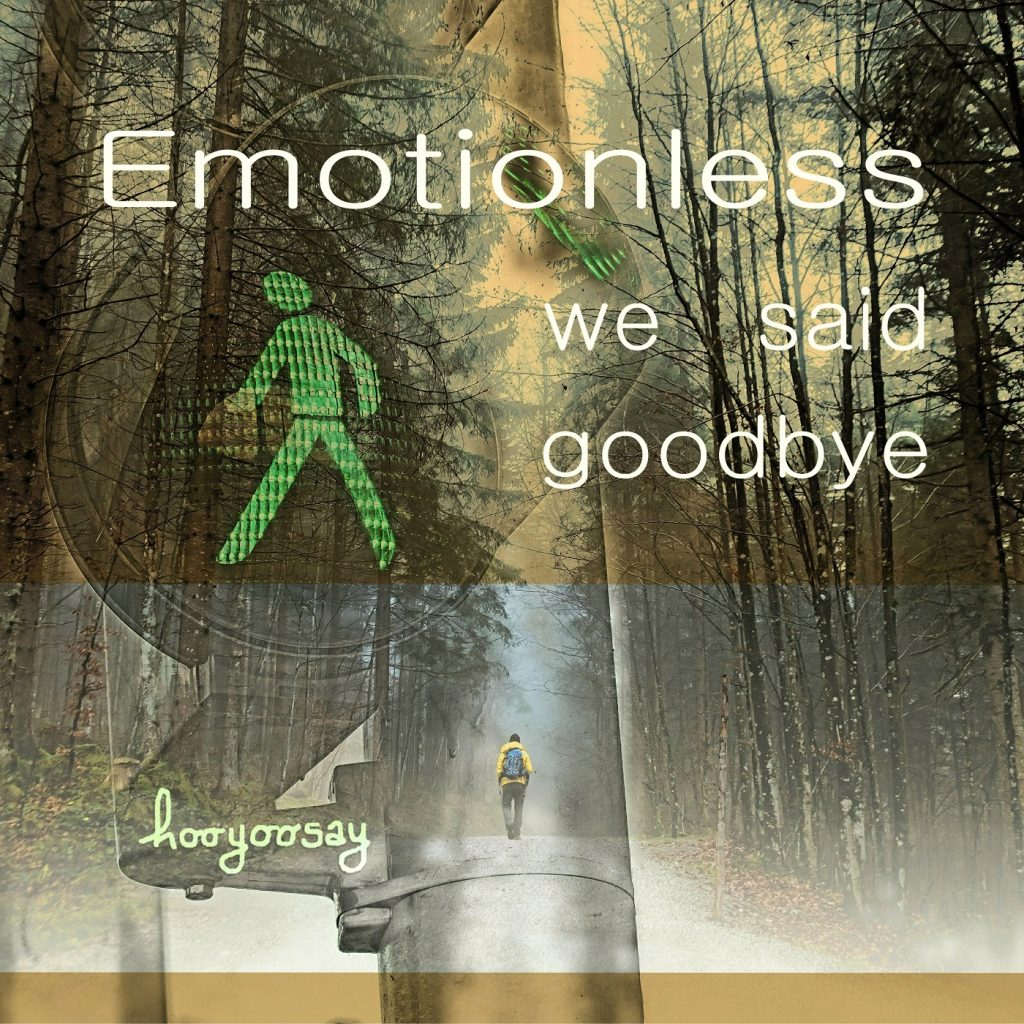 Hooyoosay, Emotionless We Said Goodbye, Single Review, Indie Music Blog, Independent Music Blog, Unsigned Artists, Producers, Music Promotion, Submit Music For Review, Submit Your Music,