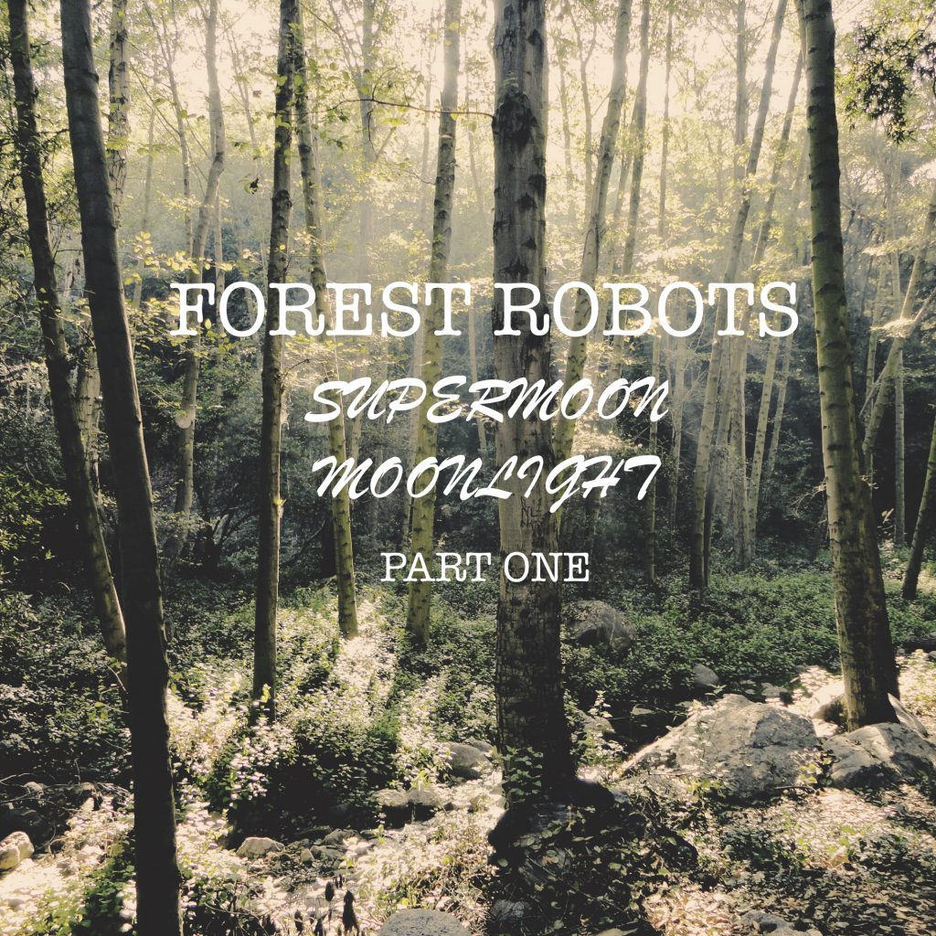 """Forest Robots """"Super Moon Moonlight Part One"""", Nature and Music, For My Daughter, Music For Review, Present Paradox, Submit Your Music, Rock Reviews, Singer Songwriter, Hip Hop Blog, Independent Hip Hop, Unsigned Artists, Professional Music Reviews, Indie Representation, Music Reviews, Guaranteed Music Reviews, UK Music Scene, Get Discovered, Get Heard, Blog Features, Interview, Exclusive, Folk Rock Blog, Indie Rock, Interview"""