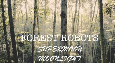 "Forest Robots ""Super Moon Moonlight Part One"", Nature and Music, For My Daughter, Music For Review, Present Paradox, Submit Your Music, Rock Reviews, Singer Songwriter, Hip Hop Blog, Independent Hip Hop, Unsigned Artists, Professional Music Reviews, Indie Representation, Music Reviews, Guaranteed Music Reviews, UK Music Scene, Get Discovered, Get Heard, Blog Features, Interview, Exclusive, Folk Rock Blog, Indie Rock, Interview"