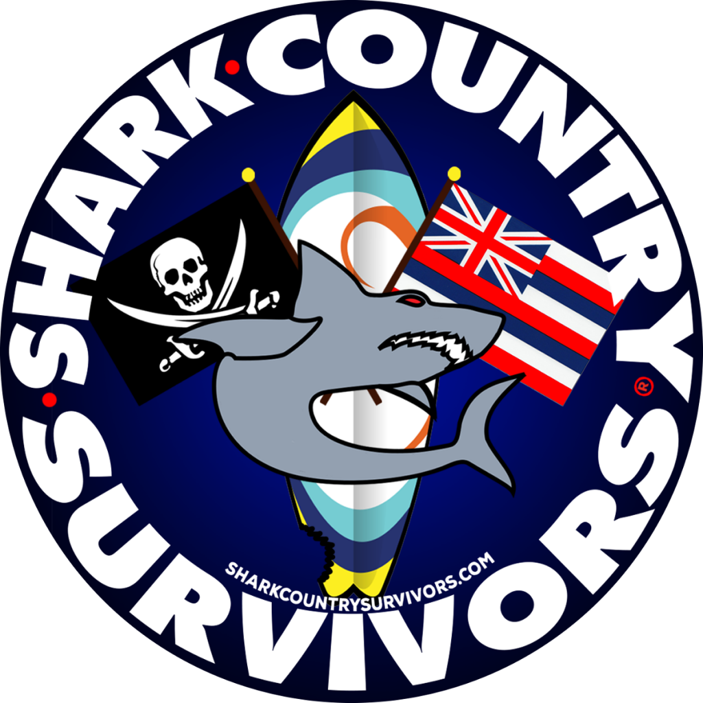 Shark Country Survivors, Liberty, Album Review, Free Album Download, Lo-fi Indie Pop, Blog Features, Interview, Exclusive, Folk Rock Blog, Indie Rock, Interview, Guitarist,
