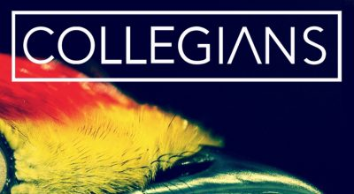 Collegians, Killer, Review, Songwriter, Bowie, Spotify Promotion, Music Video, Matt Cardle, Music Review, Producer, Polish Producer, New York, Warsaw, Music Review, Music Video, Indie Blog, Music Promotion, Free Music Promotion, Independent Music Forum, Support, Alternative Music Press, Indie Rock, UK Music Scene, Unsigned Bands, Blog Features, Interview, Exclusive, Folk Rock Blog, Indie Rock, EDM, How To Write Songs, Independent Music Blog,