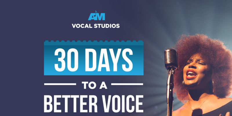 AM Vocal Studio - Online Singing Course - Stereo Stickman